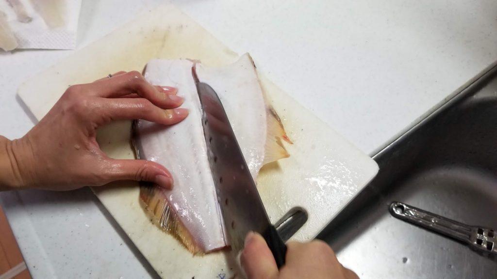 ヒラメの裏面の捌き方