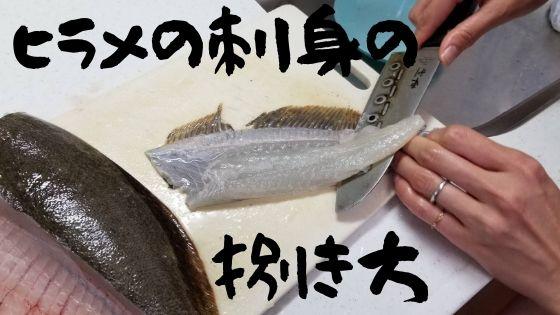 ヒラメの刺身の捌き方