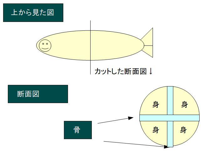 マゴチの捌き方の断面図