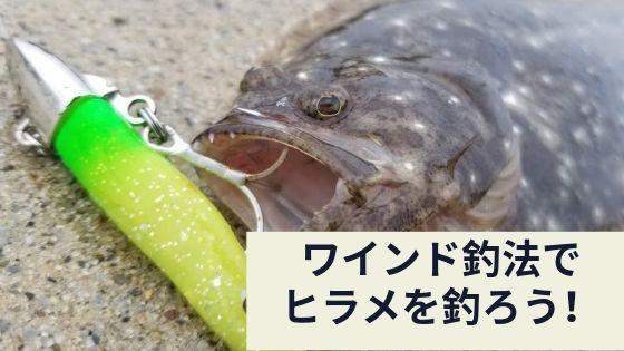 ワインド釣法で ヒラメが釣れた写真