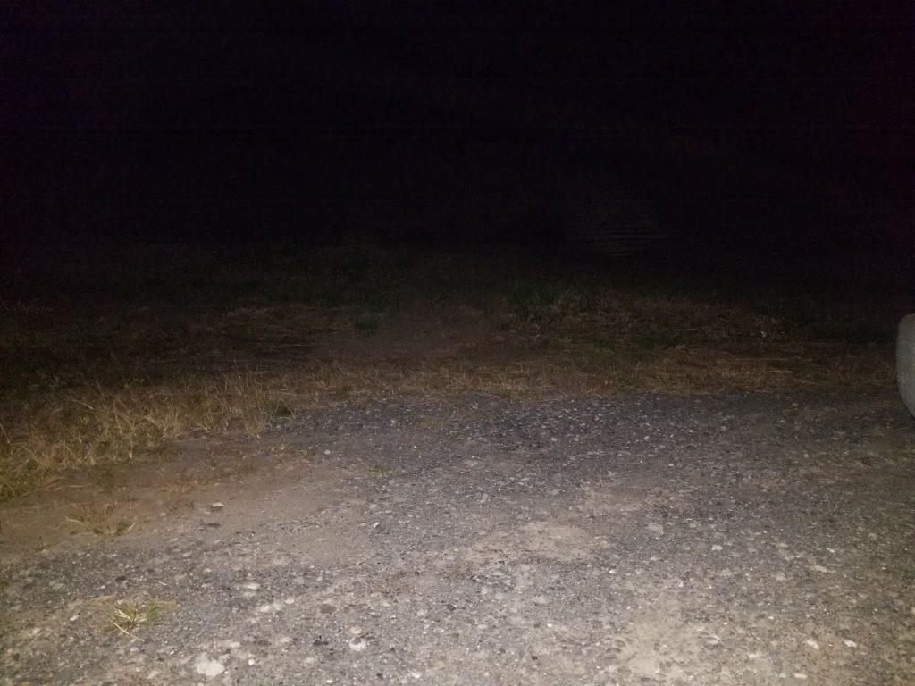 ヘッドライトの写真1