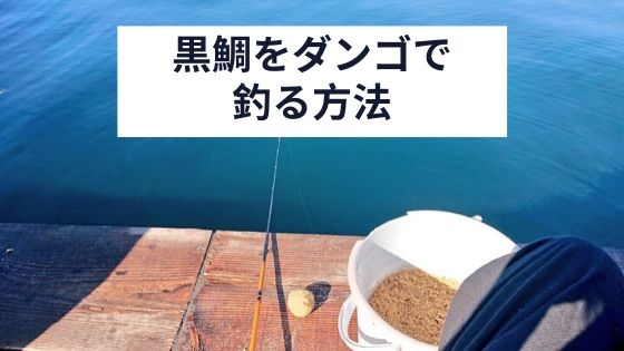 黒鯛をダンゴで釣る方法