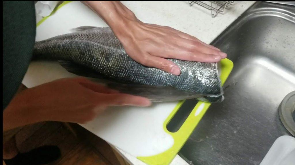 シーバスを刺身で食べる切り方⑨